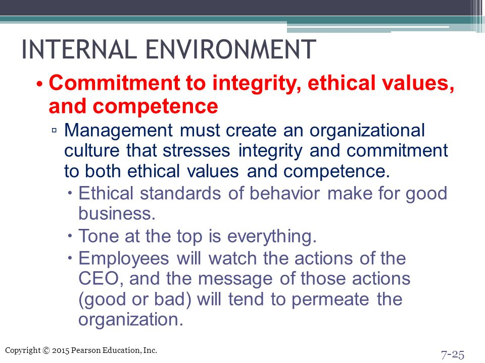 INTERNAL ENVIRONMENT Commitment to integrity, ethical values, and competence.