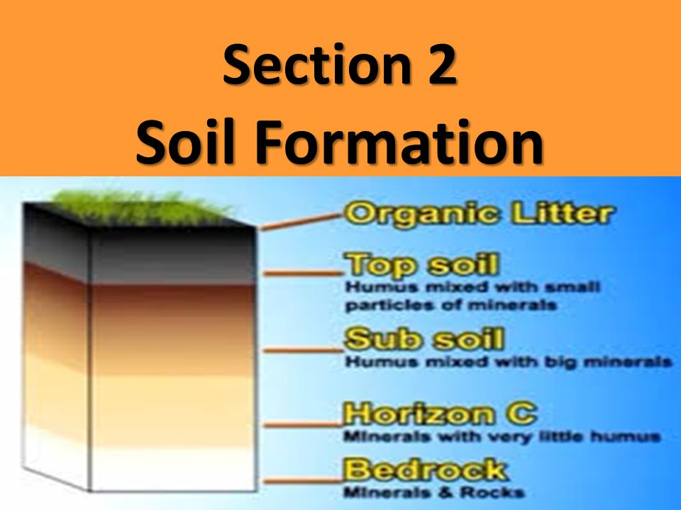 Section 2 Soil Formation