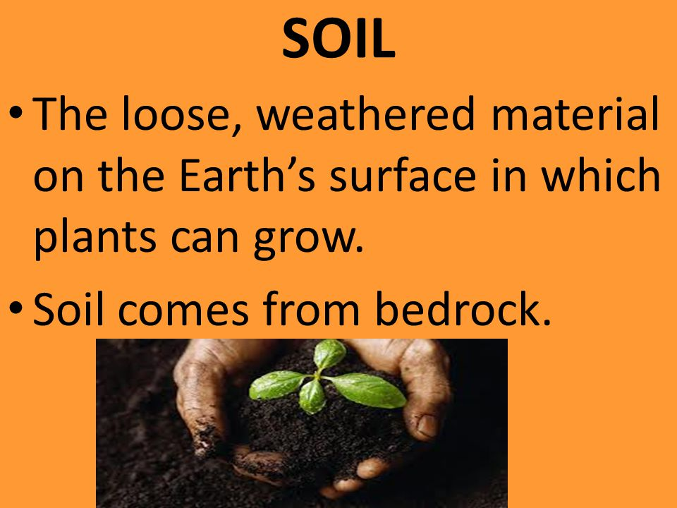 SOIL The loose, weathered material on the Earth's surface in which plants can grow.