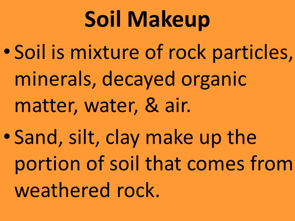 Soil Makeup Soil is mixture of rock particles, minerals, decayed organic matter, water, & air.