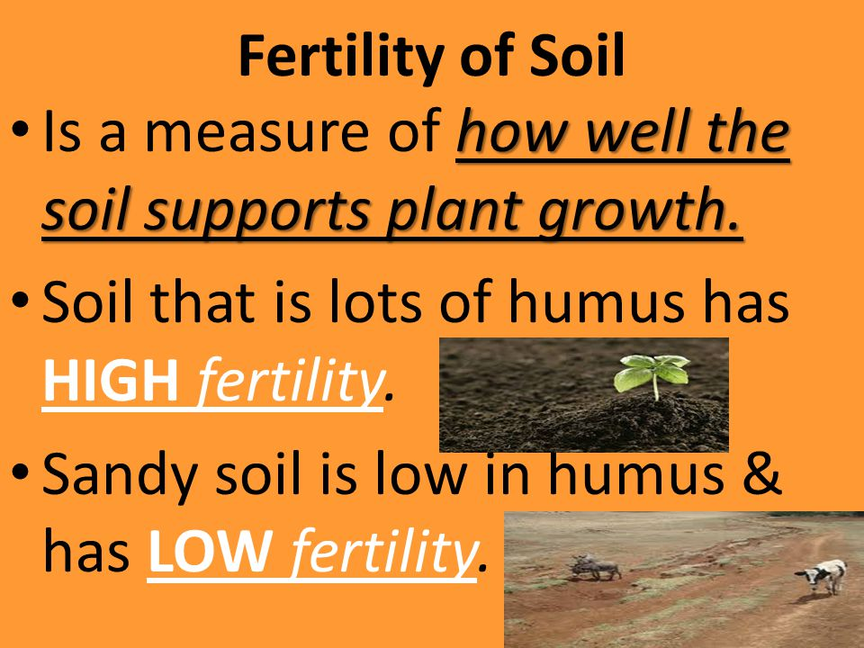 Fertility of Soil Is a measure of how well the soil supports plant growth. Soil that is lots of humus has HIGH fertility.