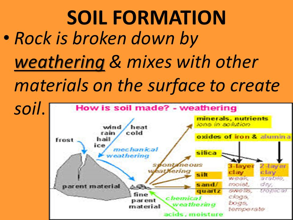 SOIL FORMATION Rock is broken down by weathering & mixes with other materials on the surface to create soil.