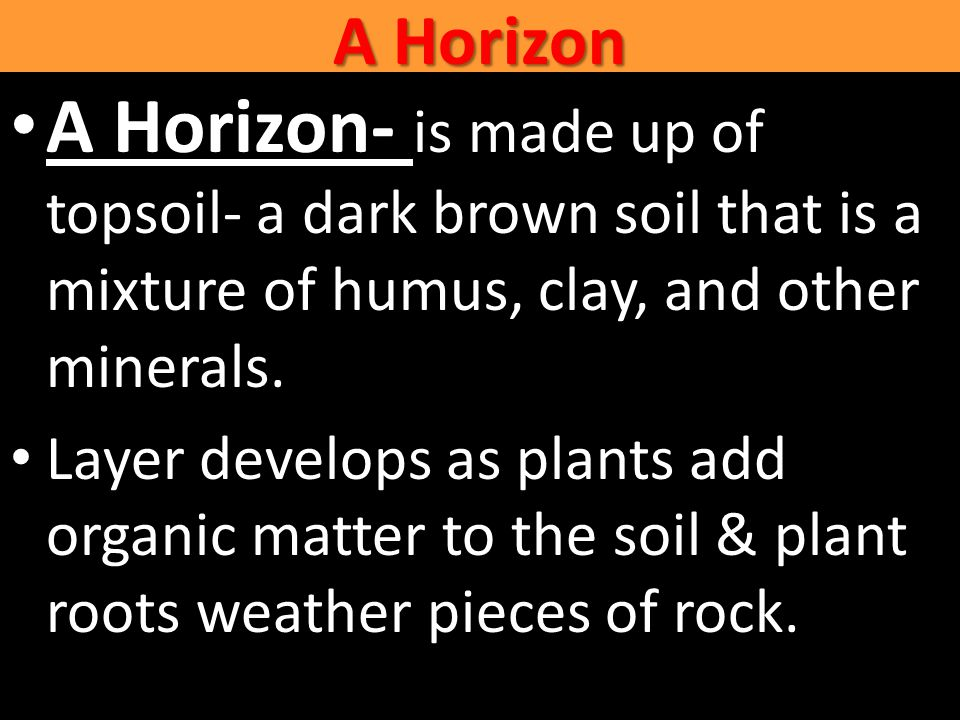 A Horizon A Horizon- is made up of topsoil- a dark brown soil that is a mixture of humus, clay, and other minerals.