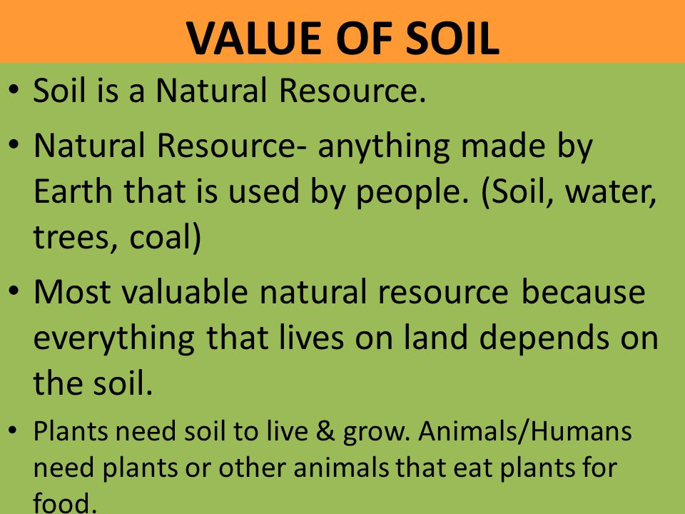VALUE OF SOIL Soil is a Natural Resource.