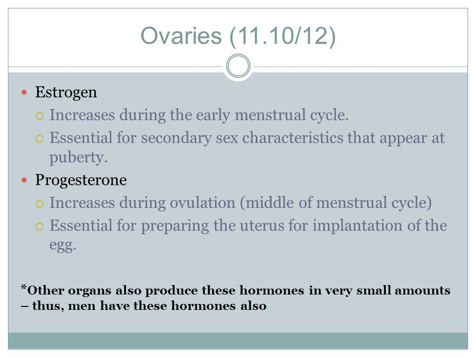 Ovaries (11.10/12) Estrogen. Increases during the early menstrual cycle. Essential for secondary sex characteristics that appear at puberty.