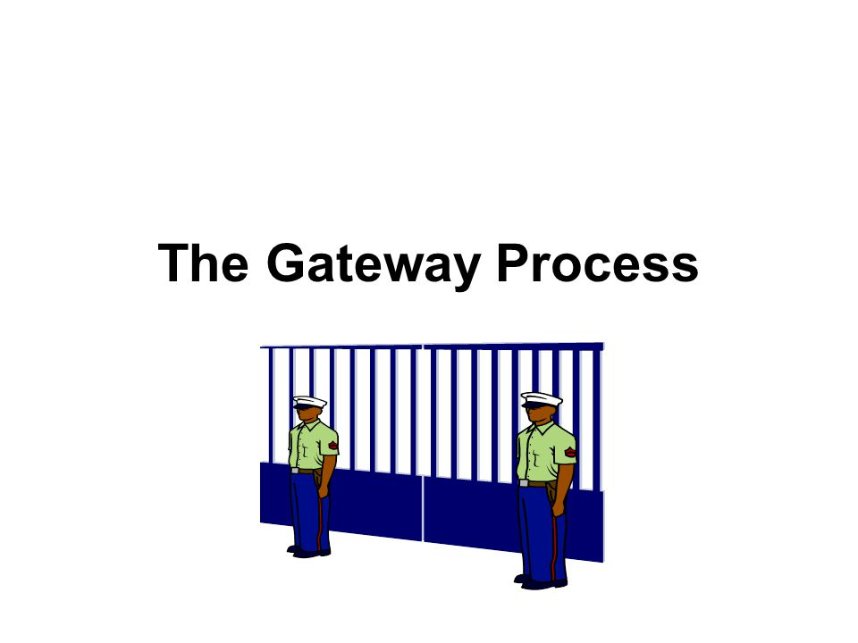 The Gateway Process