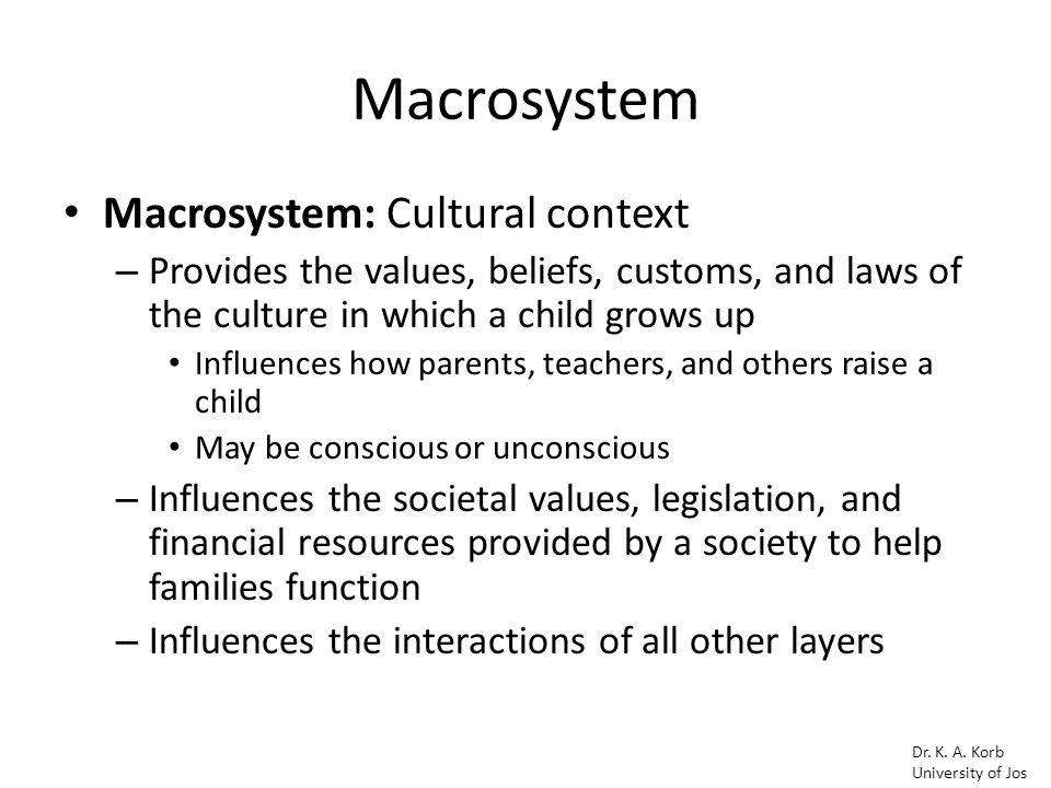 macrosystem bronfenbrenner