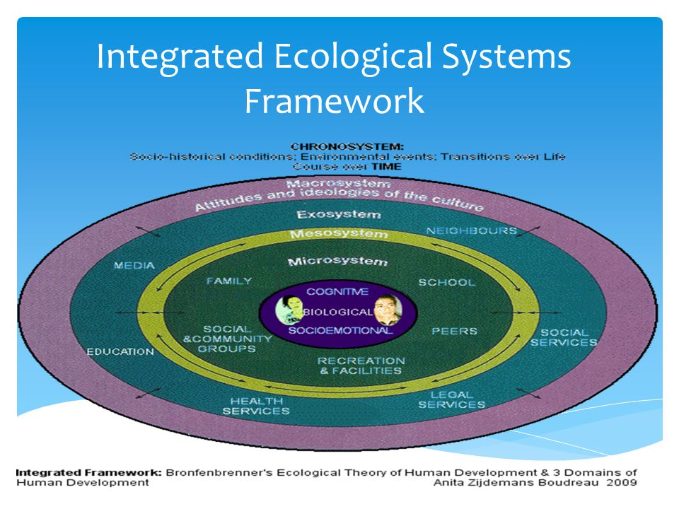 bioecological theory of development