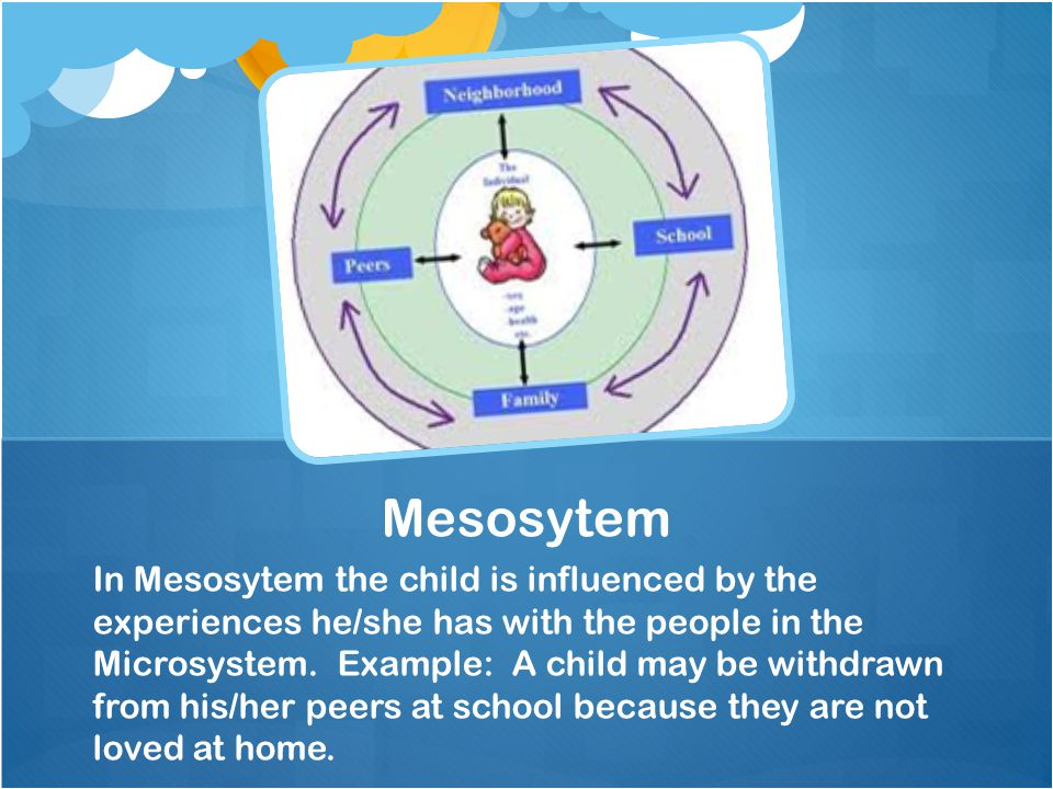 microsystem ecological systems theory