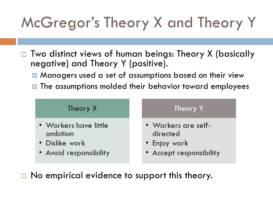 theory x definition