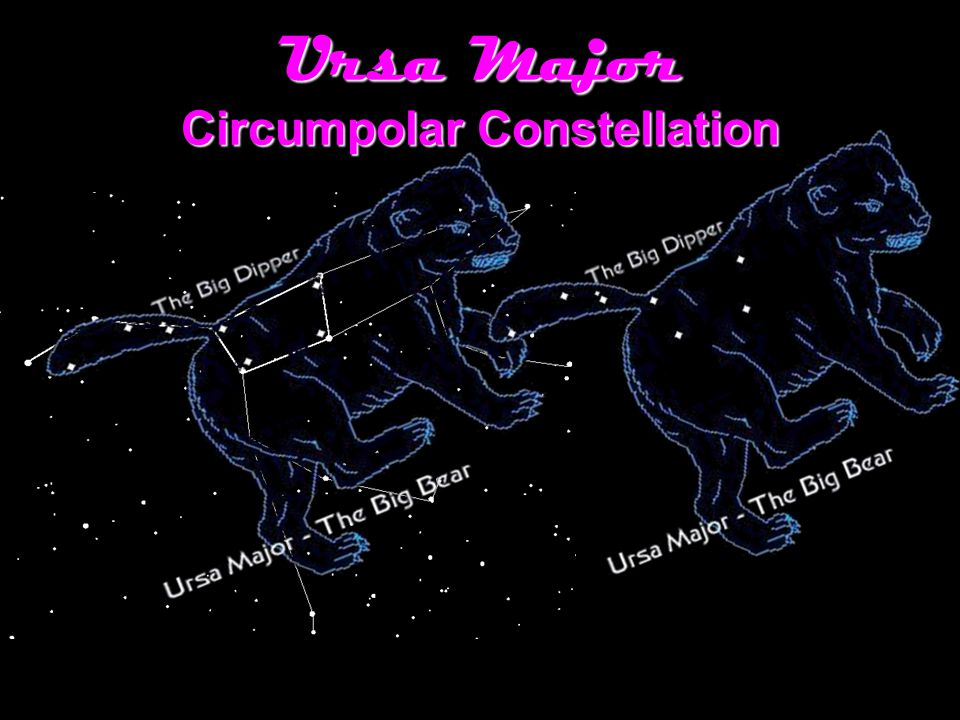 """an analysis of ursa major constellation In latin, ursa major means """"greater she-bear""""in greek arktos is the word for bear, hence the name arctic, which means bearish and describes the far northern parts of the earth where the great bear constellation dominates the heavens even more than in the northern hemisphere a very large constellation, ursa major is best known for its famous asterism or star grouping, the big dip per."""
