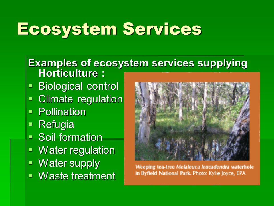 Recent developments in ecosystem services accounting integra llc.