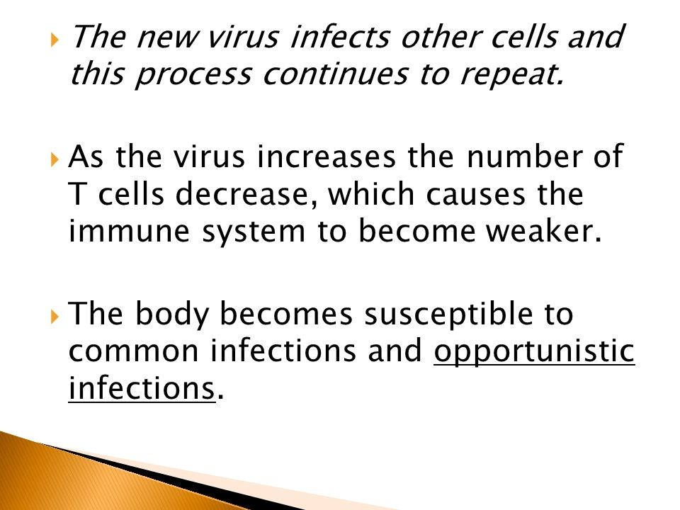 The new virus infects other cells and this process continues to repeat.