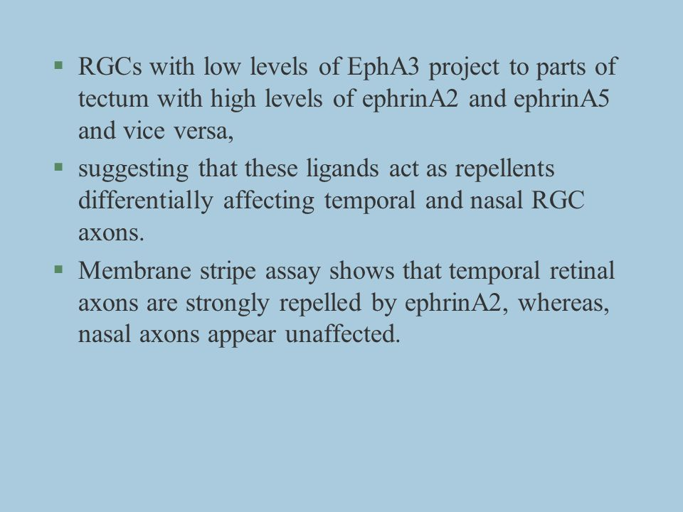 RGCs with low levels of EphA3 project to parts of tectum with high levels of ephrinA2 and ephrinA5 and vice versa,