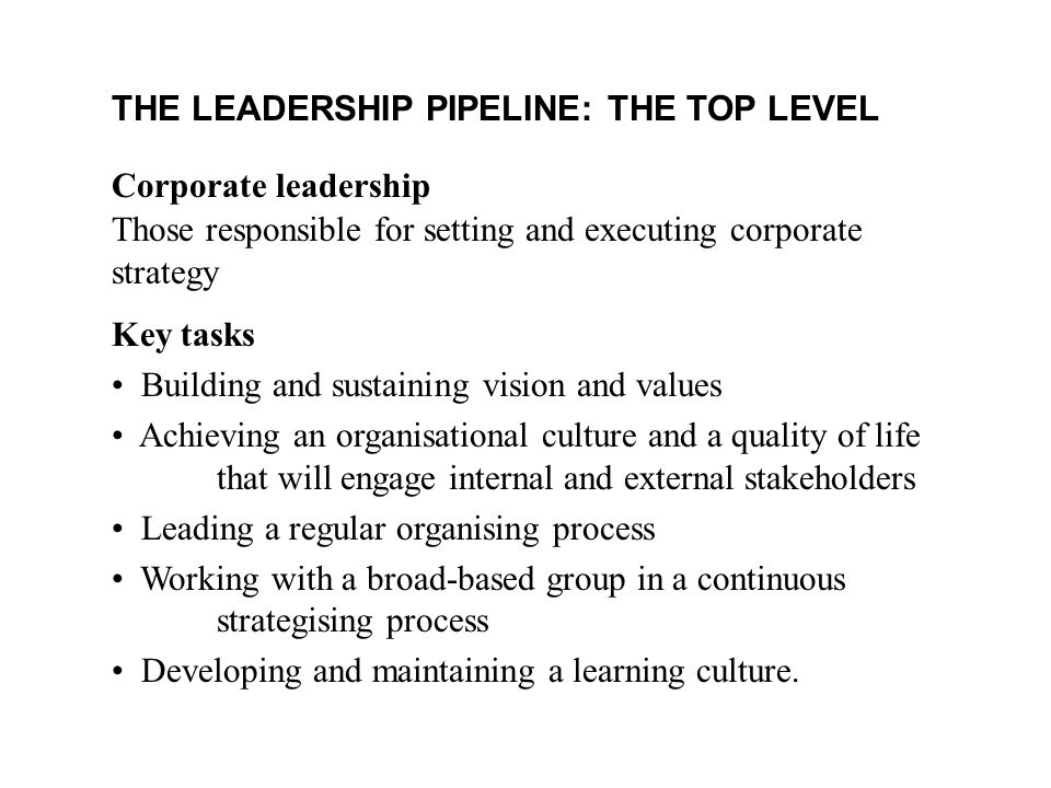 THE LEADERSHIP PIPELINE: THE TOP LEVEL