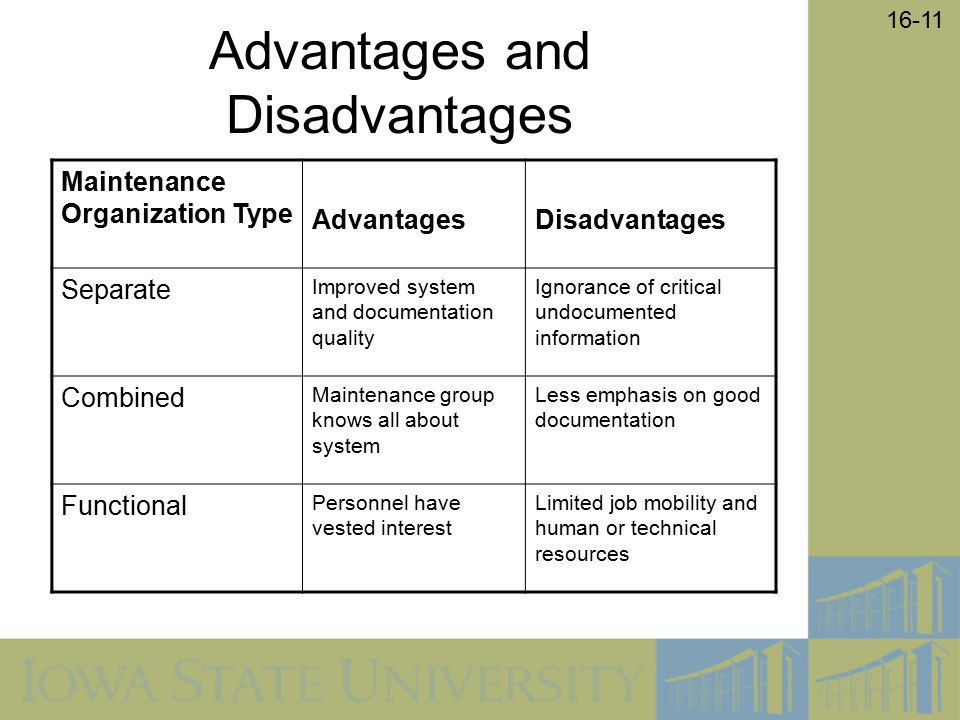 advantages and disadvantages of information