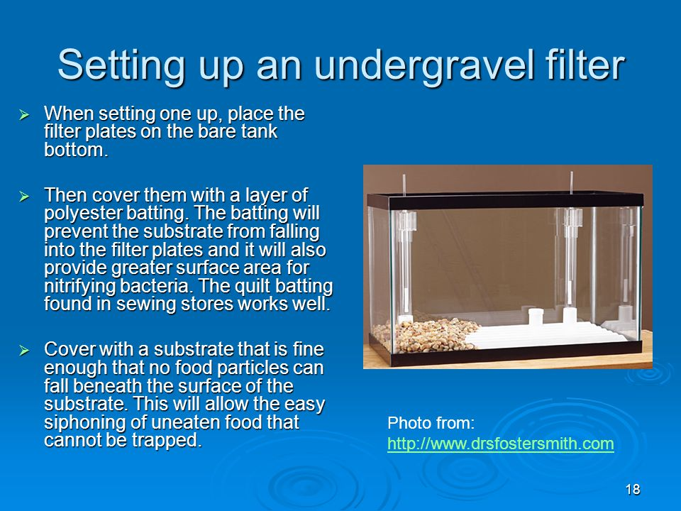 Understanding Aquarium Filtration Ppt Video Online Download