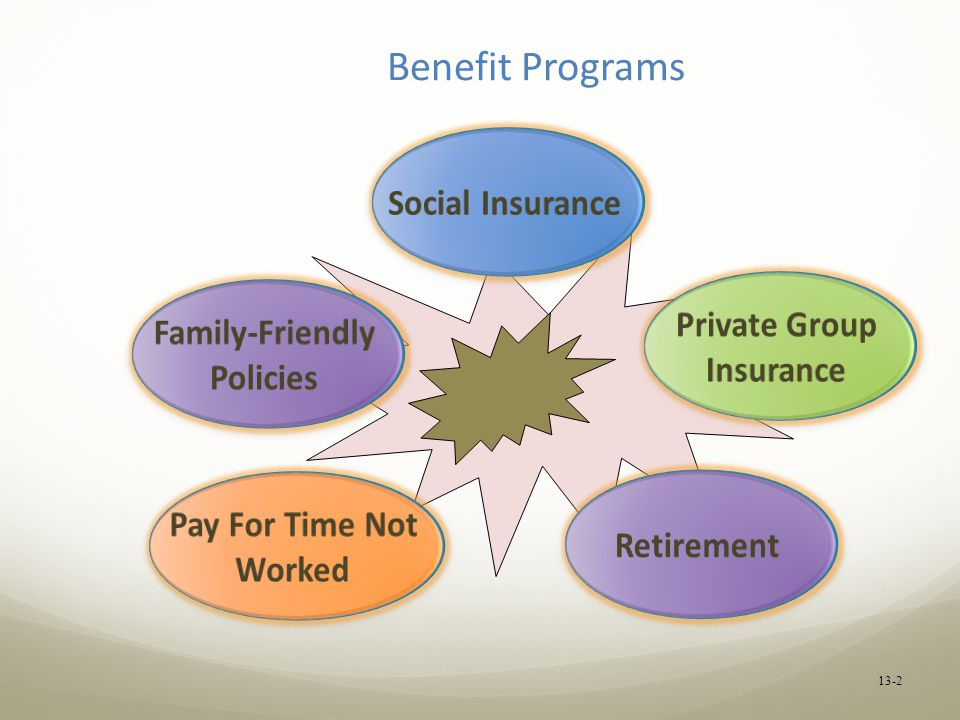 Benefit Programs Social Insurance Private Group Family-Friendly