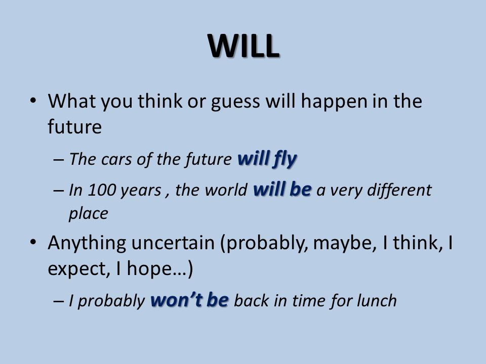 WILL What you think or guess will happen in the future