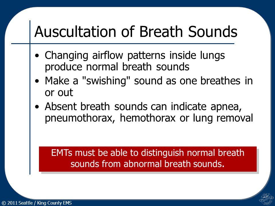 CBT425-EMT11: Respiratory Emergencies - ppt video online download