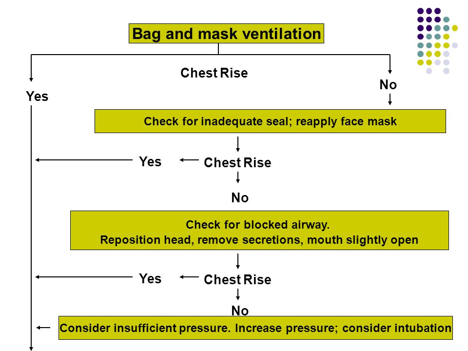 Bag and mask ventilation