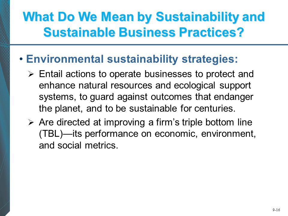 What Do We Mean by Sustainability and Sustainable Business Practices
