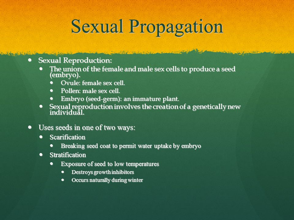 Sexual propagation definition