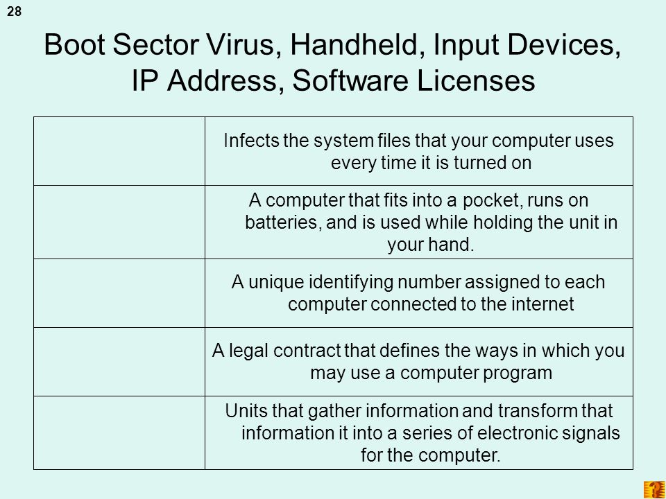 Boot Sector Virus, Handheld, Input Devices, IP Address, Software Licenses