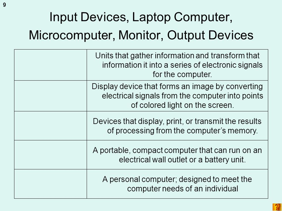 Input Devices, Laptop Computer, Microcomputer, Monitor, Output Devices