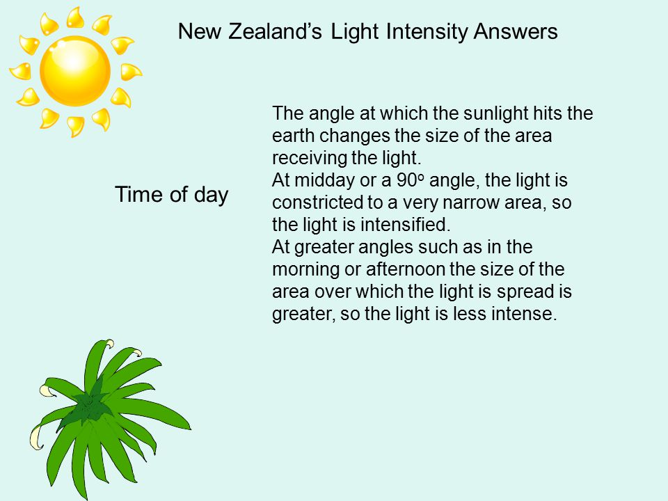 New Zealand's Light Intensity Answers