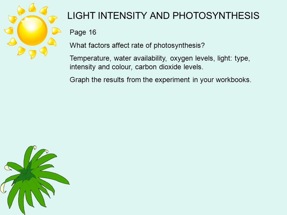 LIGHT INTENSITY AND PHOTOSYNTHESIS