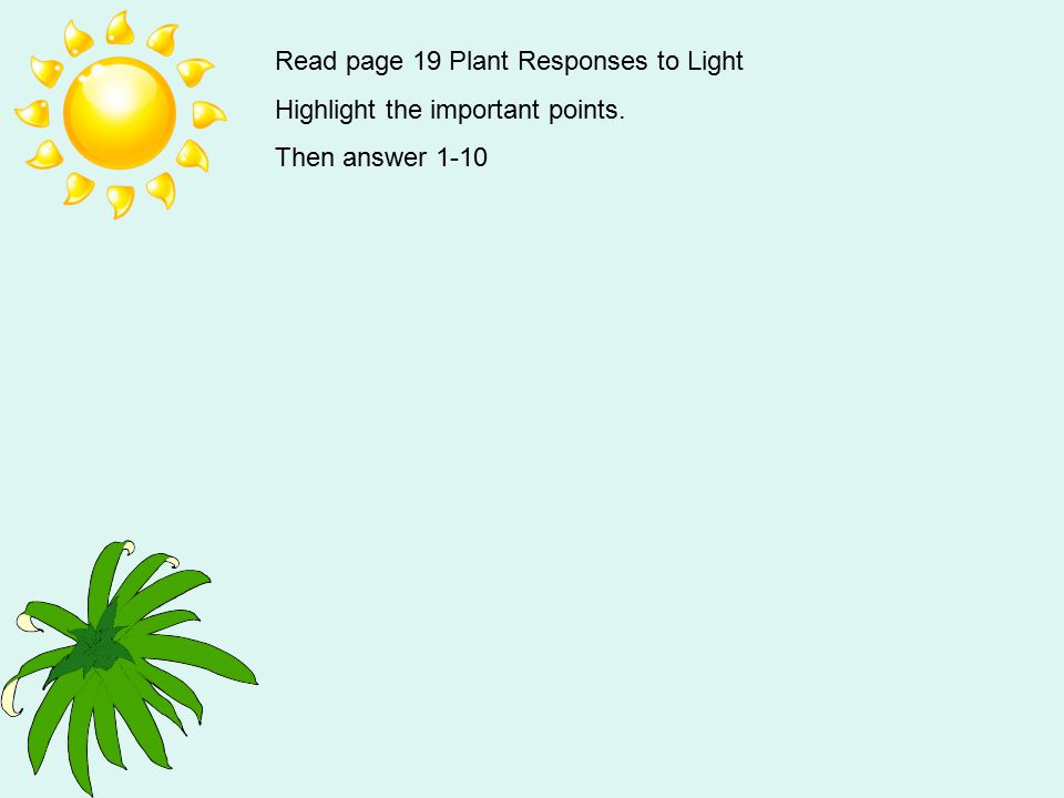 Read page 19 Plant Responses to Light