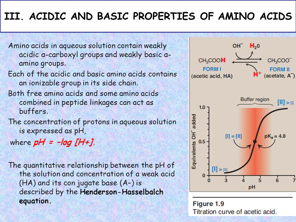 Basic biochemistry cls 233 2nd semester ppt video online download acidic and basic properties of amino acids altavistaventures