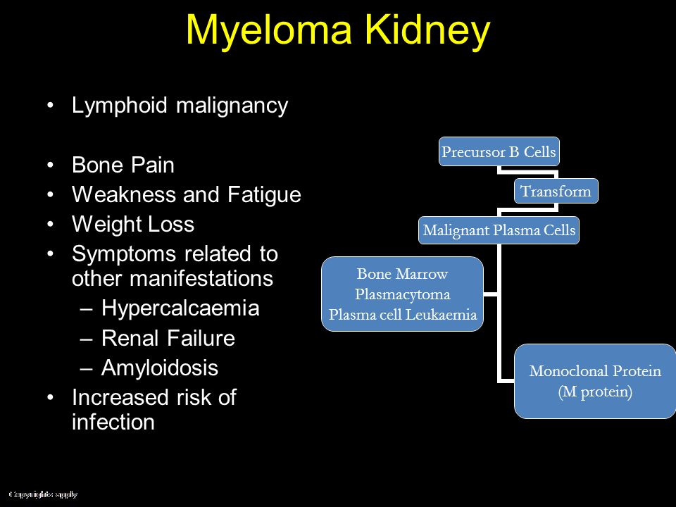 The Kidney in Systemic Disease - ppt video online download