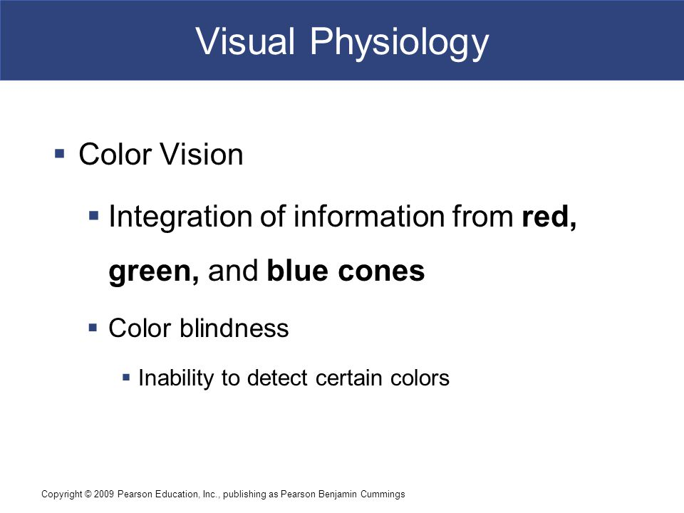Visual Physiology Color Vision