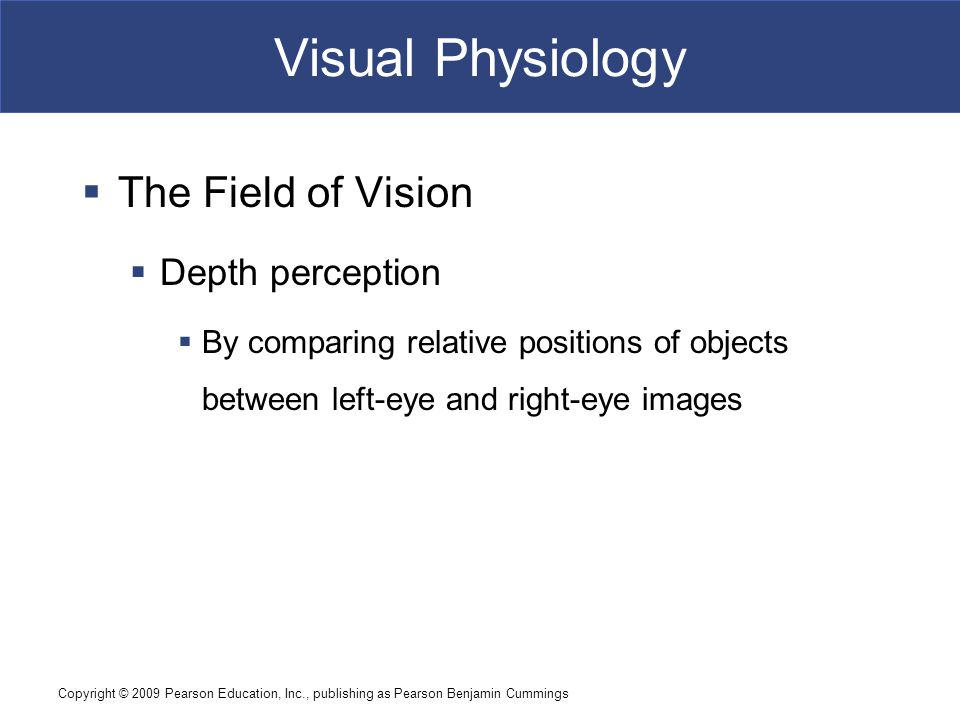 Visual Physiology The Field of Vision Depth perception