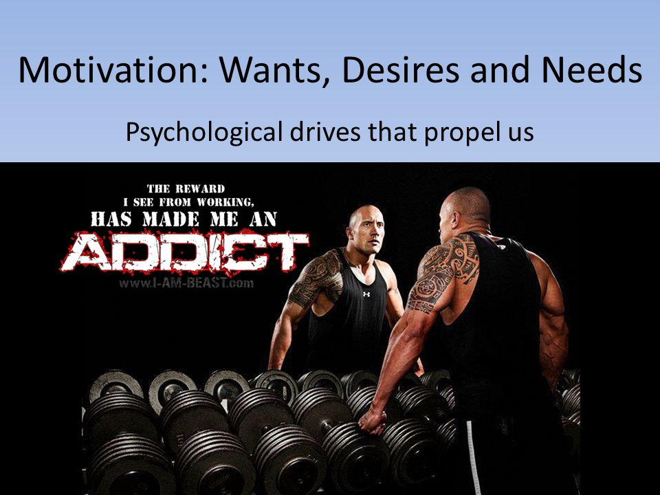 Motivation: Wants, Desires and Needs
