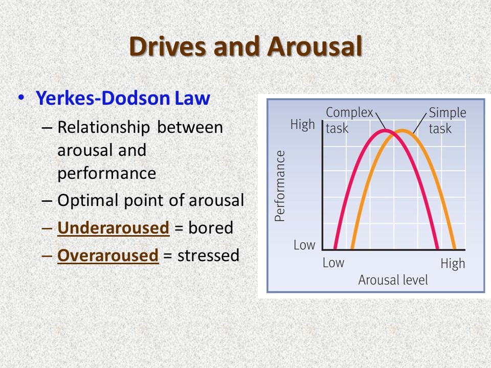 Drives and Arousal Yerkes-Dodson Law