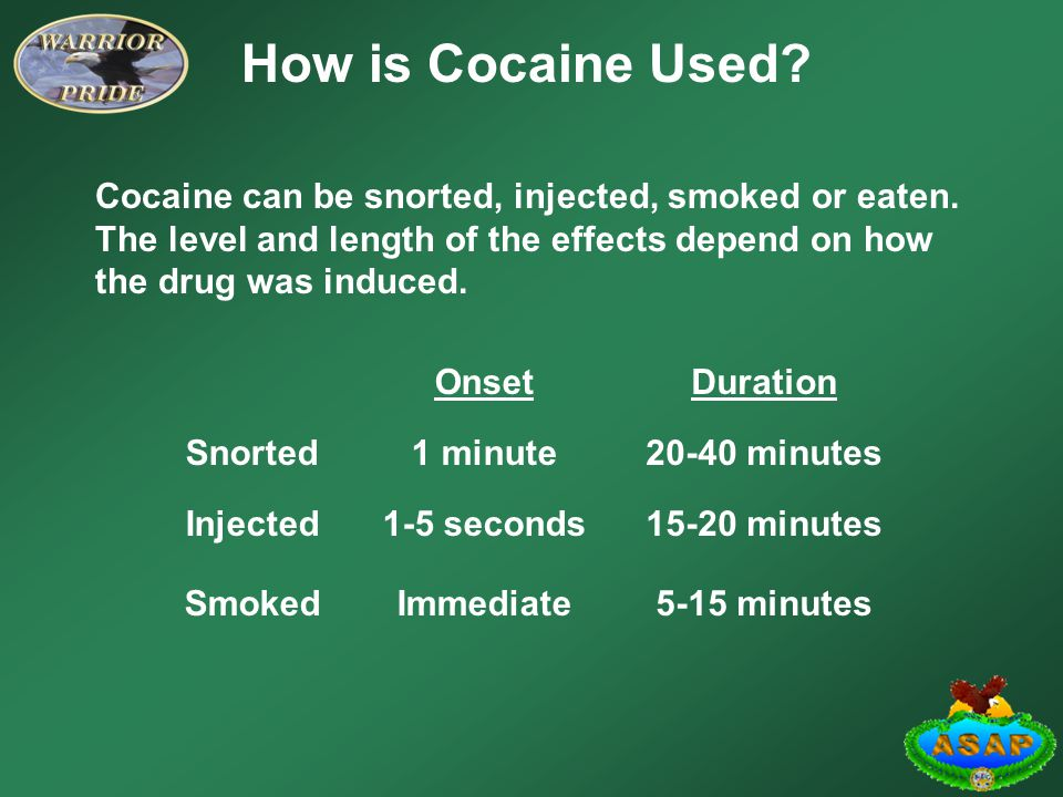How is Cocaine Used Cocaine can be snorted, injected, smoked or eaten. The level and length of the effects depend on how the drug was induced.