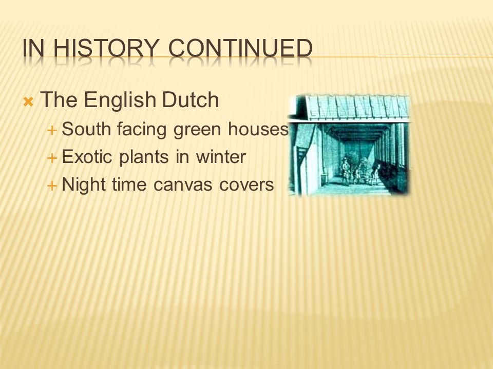 In history continued The English Dutch South facing green houses