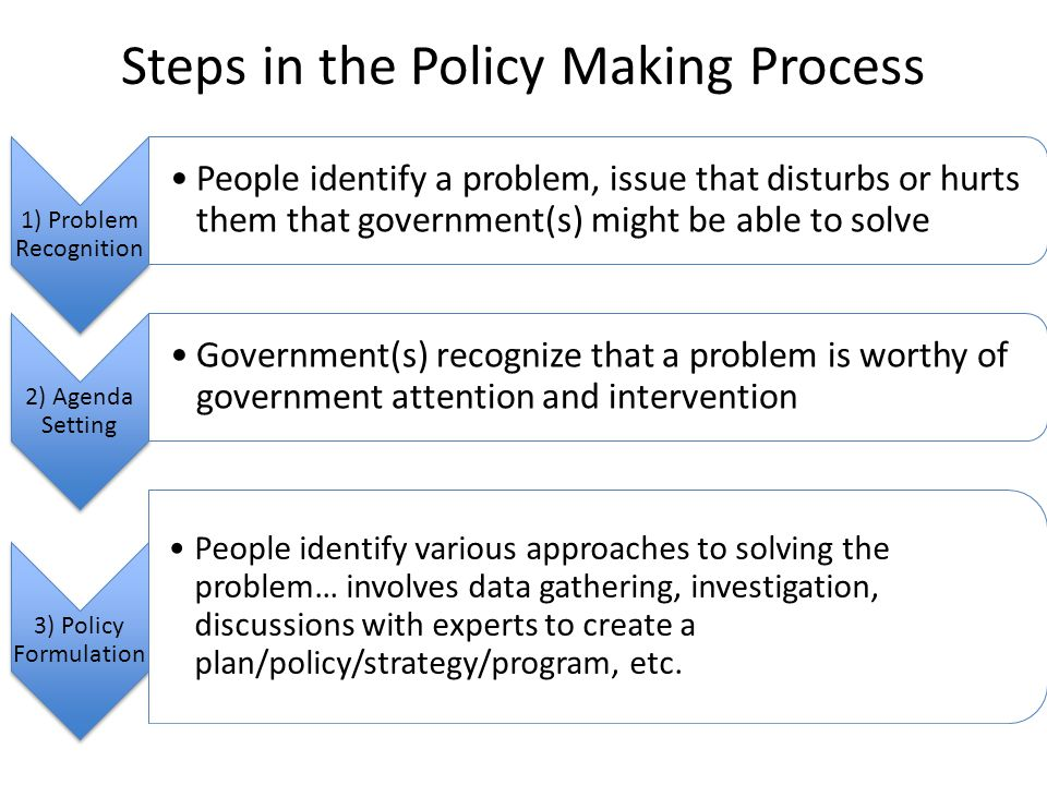 role of legislature in policy making process