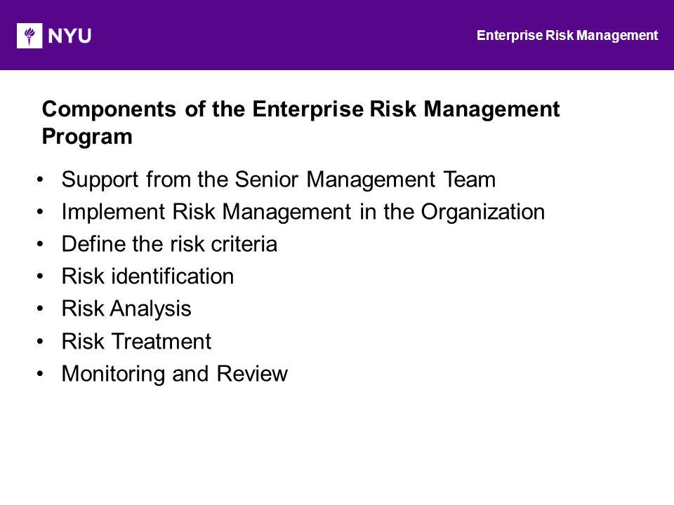 Enterprise Risk Management Ppt Video Online Download