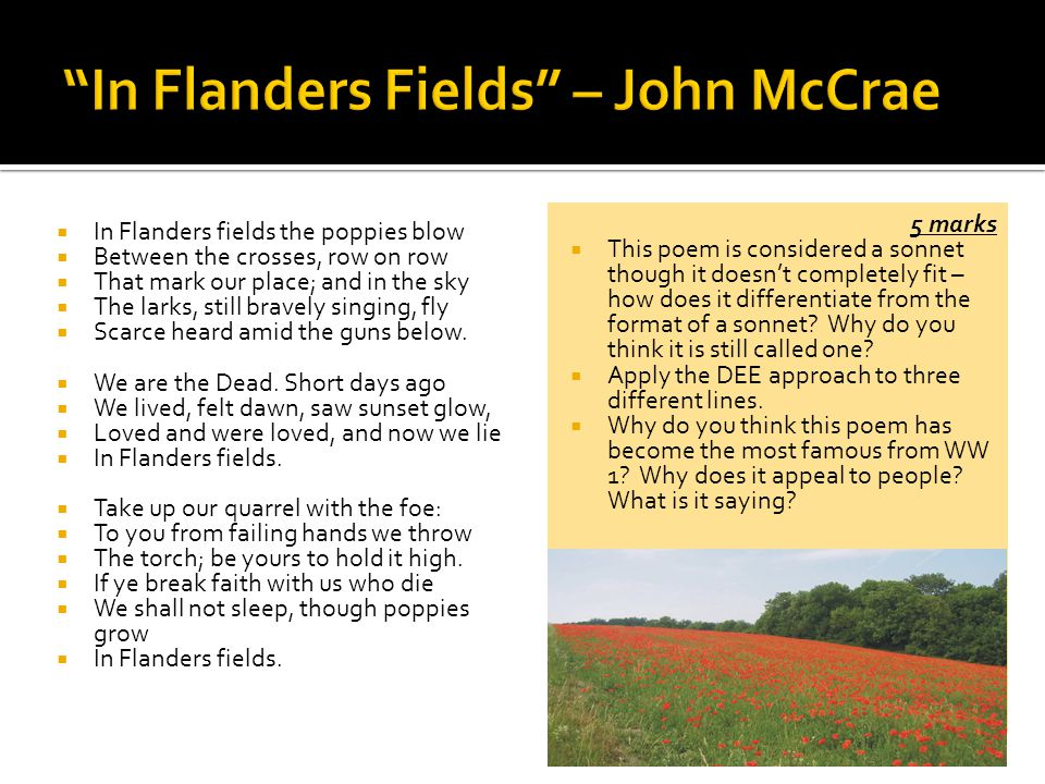 Anime Wallpaper Heaven In Flanders Fields Poem Summary