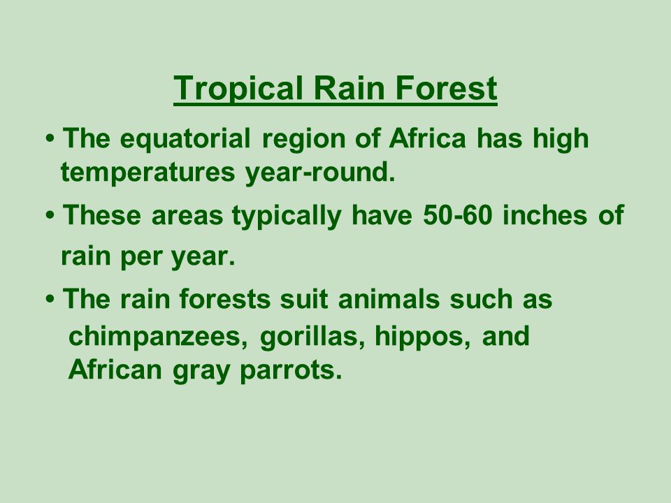 Tropical Rain Forest • The equatorial region of Africa has high