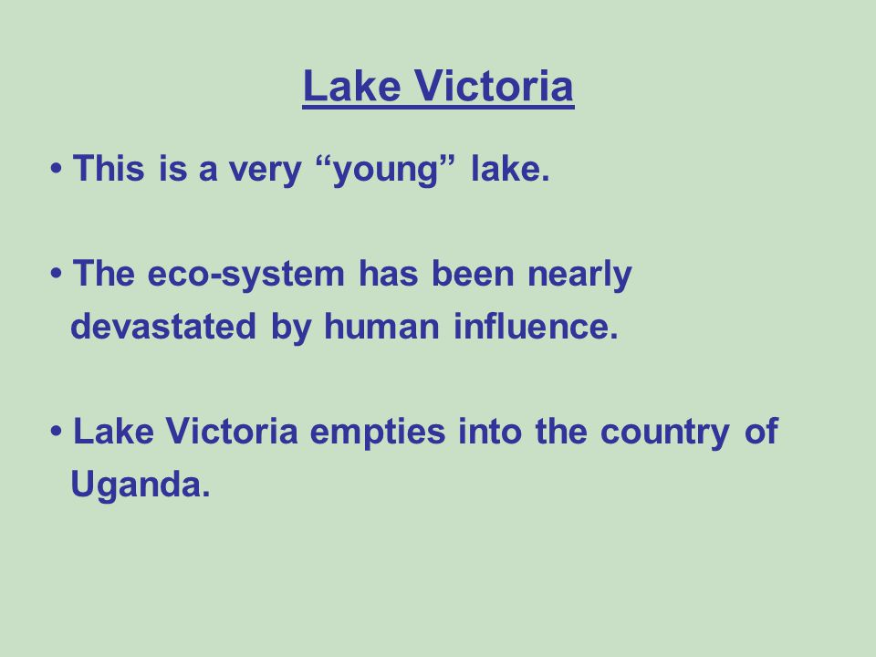 Lake Victoria • This is a very young lake.