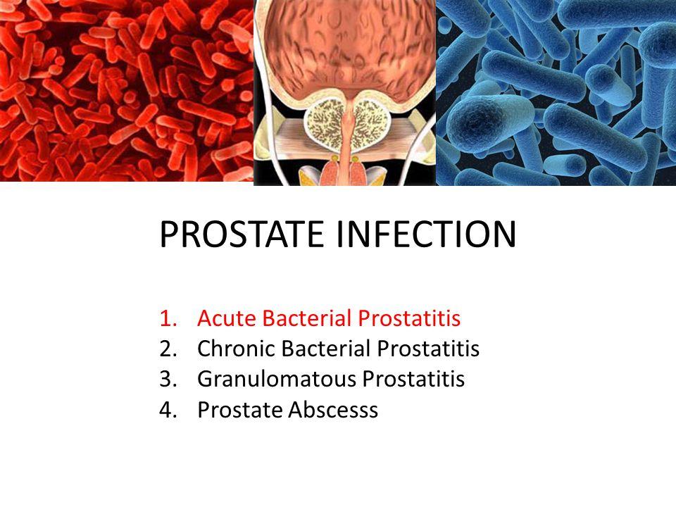prostatitis ppt)