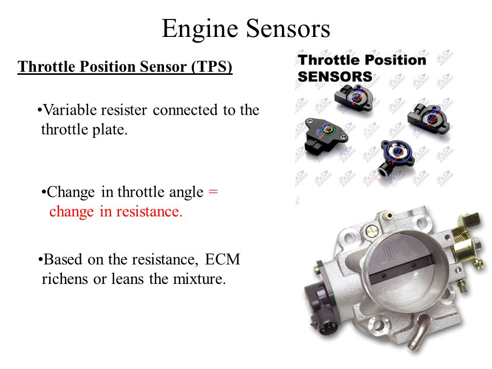 Engine Sensors Throttle Position Sensor (TPS)