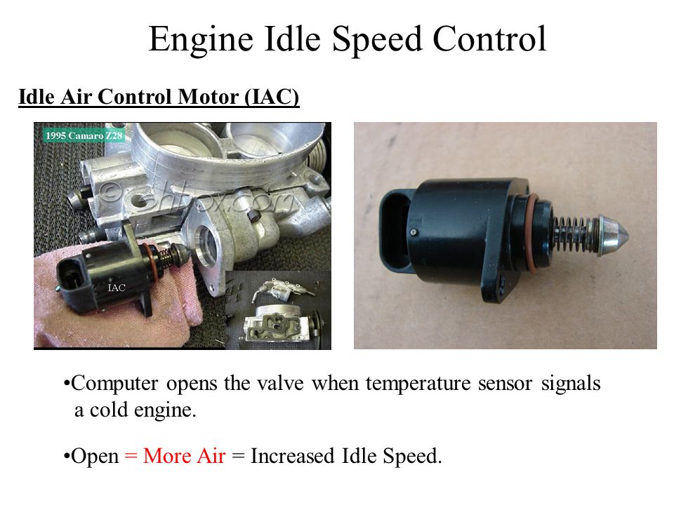 Engine Idle Speed Control