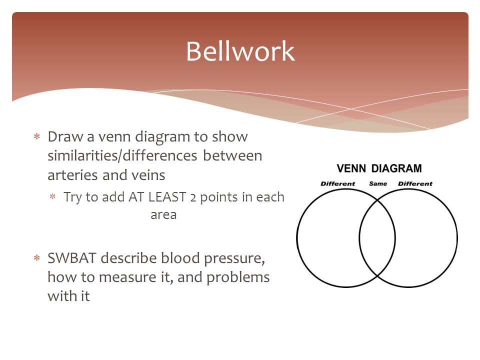 Bellwork draw a venn diagram to show similaritiesdifferences bellwork draw a venn diagram to show similaritiesdifferences between arteries and veins ccuart