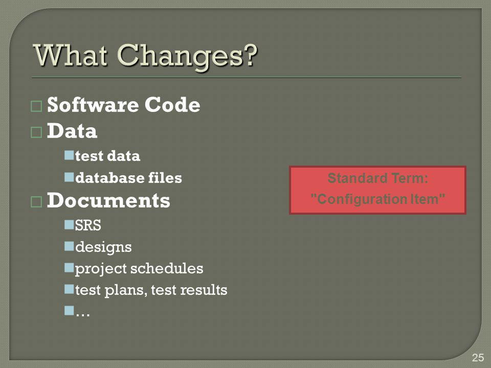 What Changes Software Code Data Documents test data database files